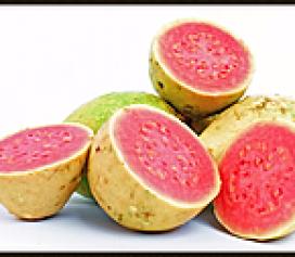 Dicas Pet: Frutas
